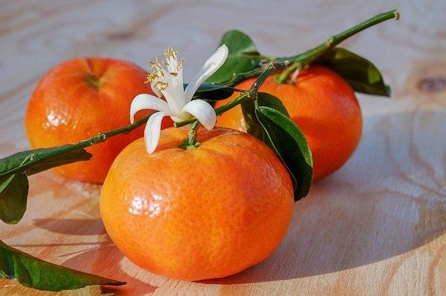 mandarine et turquoise