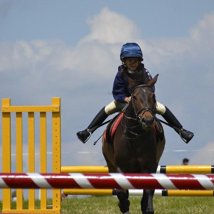 fer a cheval et compétition