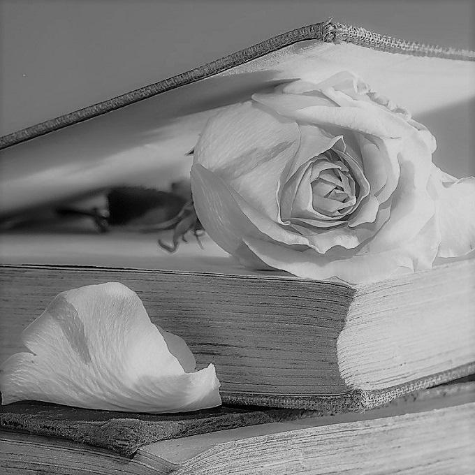 livre du romantisme